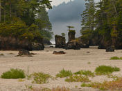 San Josef Bay, Cape Scott