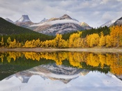 Kananaskis fall colours