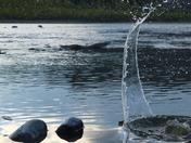 Rock Hitting the Water