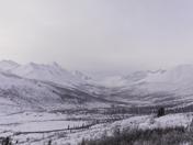 Tombstone in the Yukon