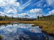 Fall impressions at Algonquin Provincial Park
