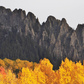 Grand Mesa and Uncompahgre National Forests