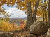 Autumn Spectacle