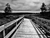 PEI National Park Boardwalk