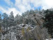 Black Hills Nationa Forest