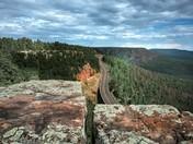 Woods Canyon Lake Recreation Area