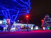 Christmas Light Joy!!!