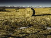 Three Hay Bales, Winter Mountains