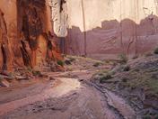 Paria Canyon-Vermillion Cliffs Wilderness