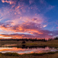 Uinta National Forest