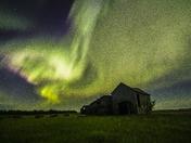 A Cloud of Green