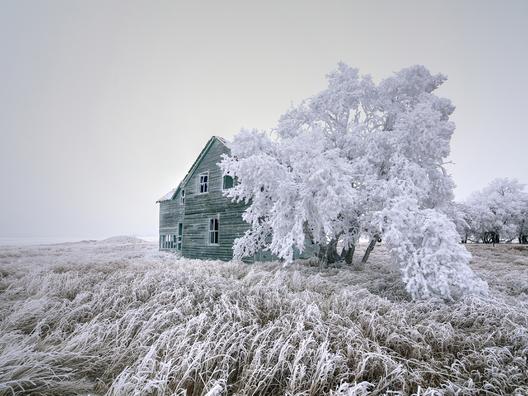 4c. Rime frost