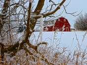 White Snow - Red Barn