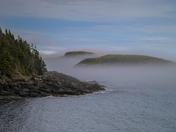 A Foggy Newfoundland Coast