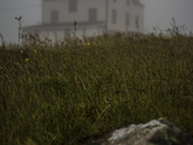 Ferryland Lighthouse, Newfoundland