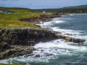 Rocky Shores of Newfoundland