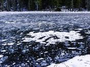 Snow, Ice & Trees