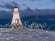 Lighthouse Evacuation