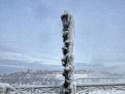 Frozen Lamppost