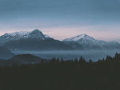 Mountain Views in the Fog