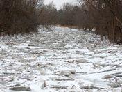 Humber River, Bolton ice jams