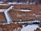 Kerncliff park, winter.