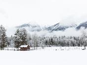 The New Fallen Snow