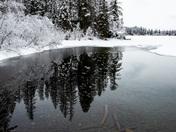 Unfrozen Pond