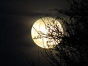 Equinox super worm moon