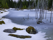 Icy Blue Beaver Pond