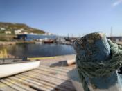 Bay de Verdes, Newfoundland