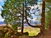 Hiking Mount Nemo Conservation area.