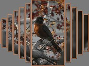 Manipulated Robin
