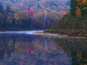 Picturing Autumn