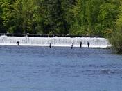 Special fishing weekend