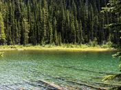 Vista Lake View
