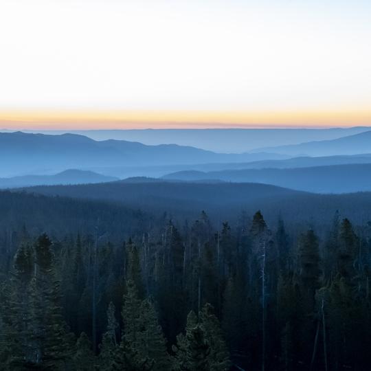 Medicine Bow-Routt National Forests & Thunder Basin National Grassland