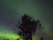Night sky in Elk Island