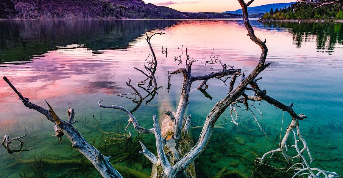 Kalamalka Lake.