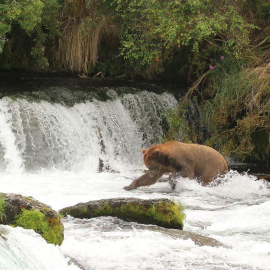 Katmai National Park & Preserve