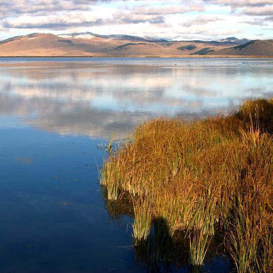 Red Rock Lakes National Wildlife Refuge