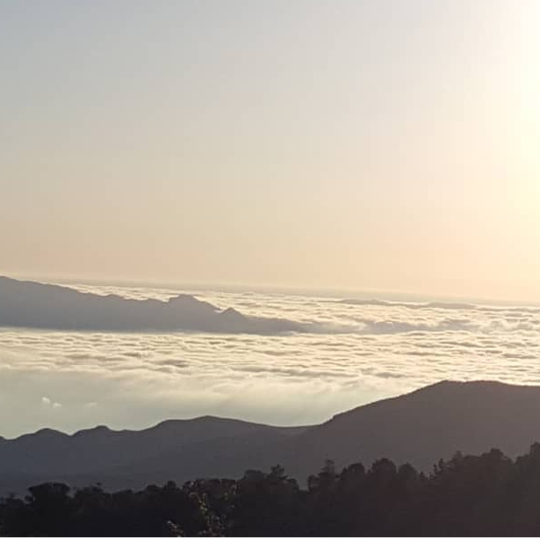 Humboldt-Toiyabe National Forest