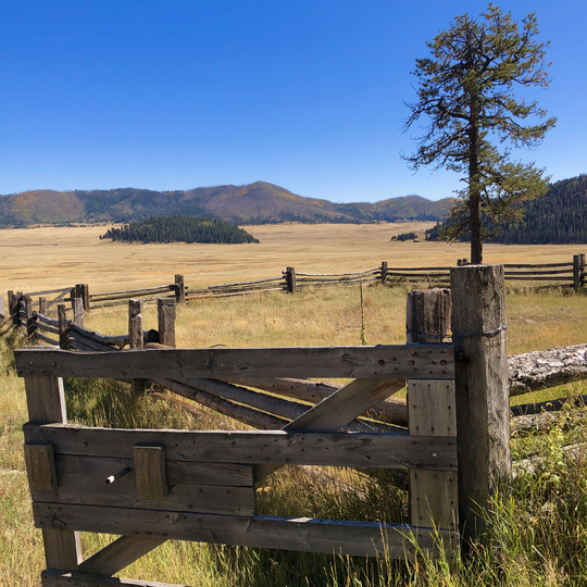 Valles Caldera National Preserve