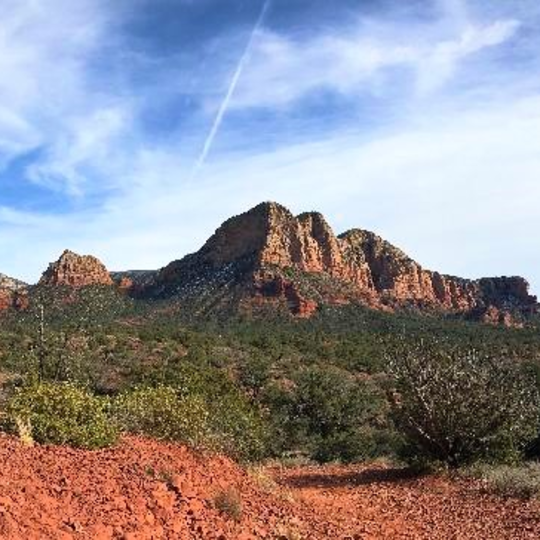 Coconino National Forest
