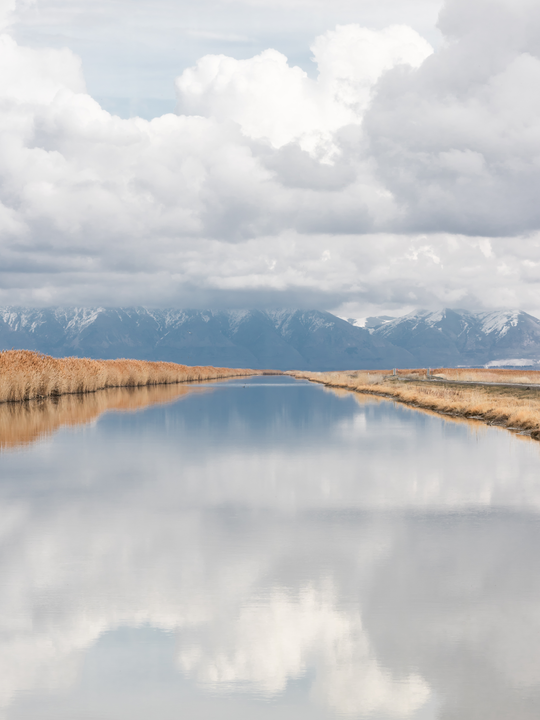 Bear River Migratory Bird Refuge