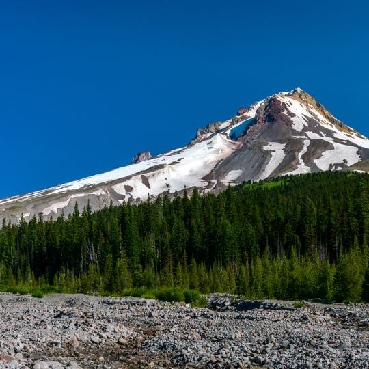 Mt. Hood National Forest