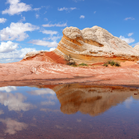 Vermilion Cliffs National Monument
