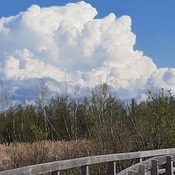puffy clouds
