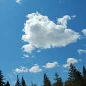 seal cloud