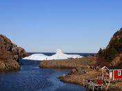 quidi vidi icebergs.JPG